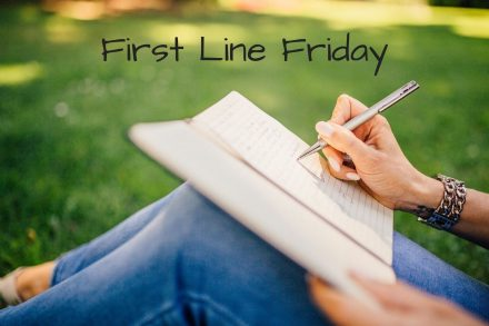 First Line Friday: Mind The Gap